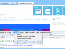 Activate-the-hidden-Color-Picker-Tool-Ruler-in-Internet-Explorer-10.png
