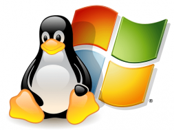 Linux and Windows