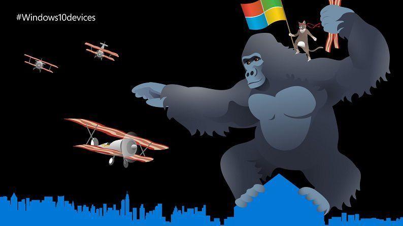 windows_ninjacat_oct6_1920_1080