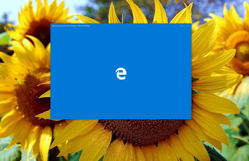 Microsoft Edge Summer Update