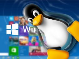 Win 10 Linux