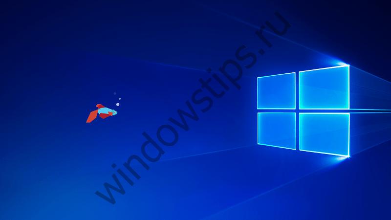 Вышла сборка Windows 10 Insider Preview 16170 для настольных систем