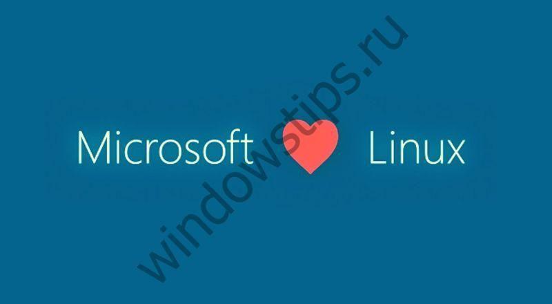 В магазине Windows теперь доступны SUSE Linux Enterprise и openSUSE Leap 42