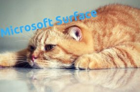 surface_not_sle_mini_wtps