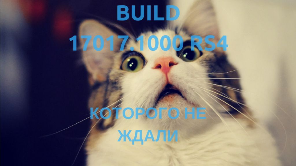 Build 17017.1000 RS4