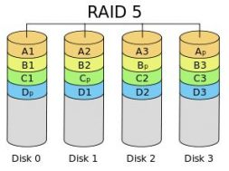 rd-mssv(66)