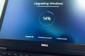 windows1_result